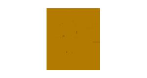 logo-corvinus